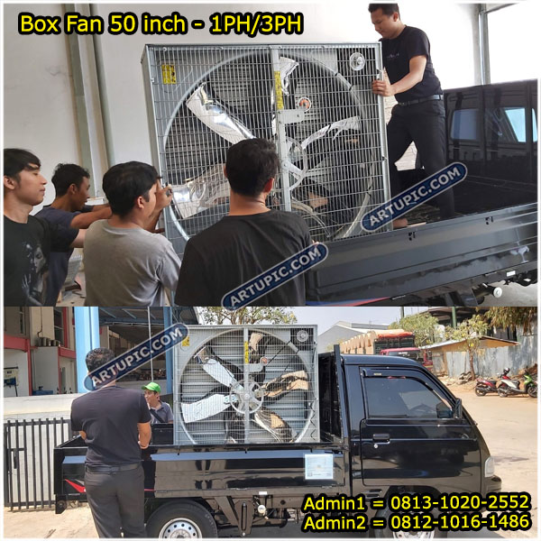 Box fan exhaust kandang ayam